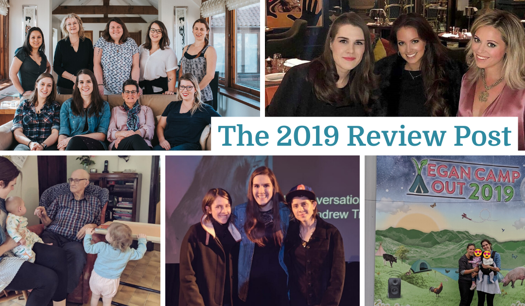 The 2019 Review Post