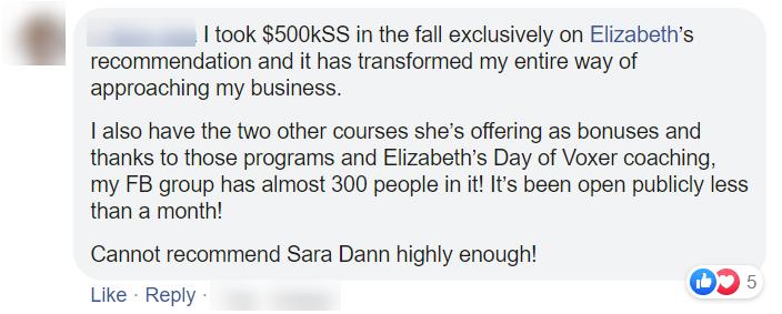 Testimonials from Sara Dann's $500k Sales System