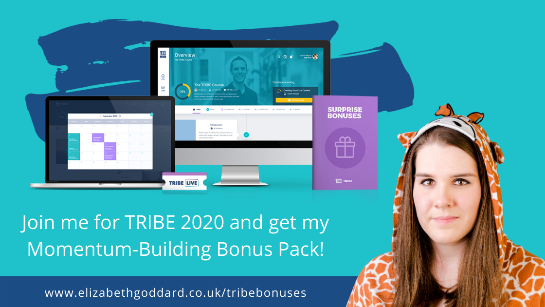 Stu McLaren's TRIBE Course Review and bonuses